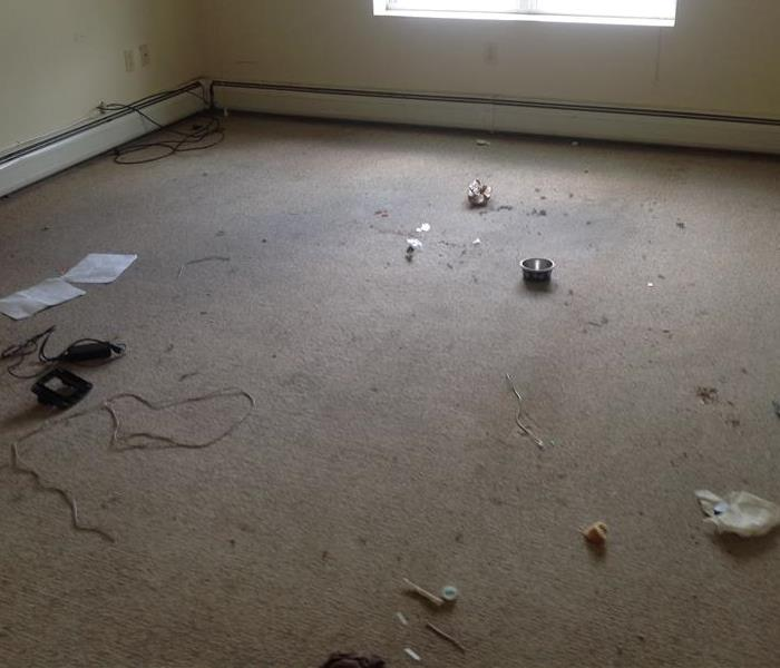 bedrooms woord subfloor exposed with debris scattered on the floor