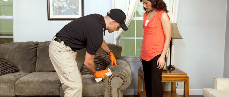 Ellenville, NY carpet upholstery cleaning