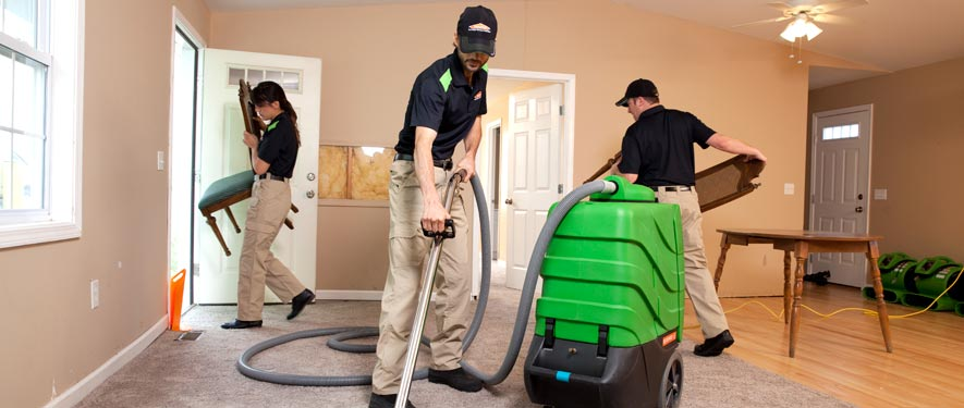 Ellenville, NY cleaning services